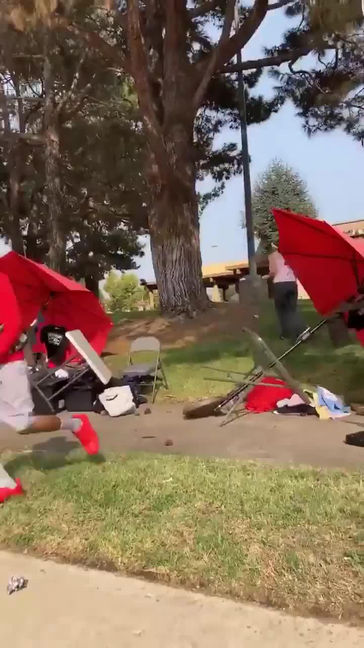 BLM Activist Attacks Trump Supporter and Destroys Their Stalls