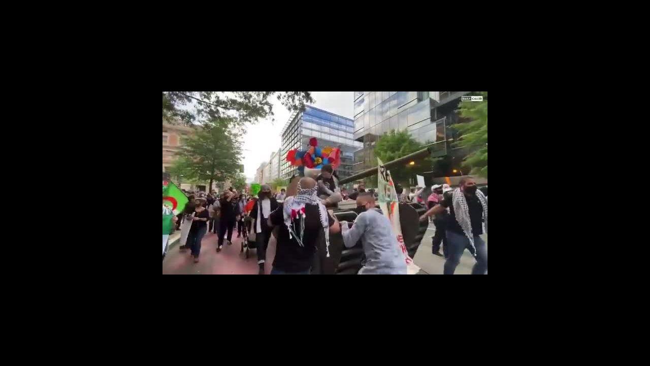 Pro-Palestinian March in Washington